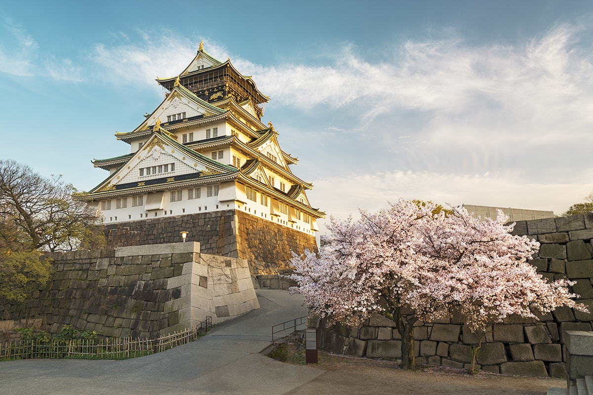 10 day Japan Panorama with flights