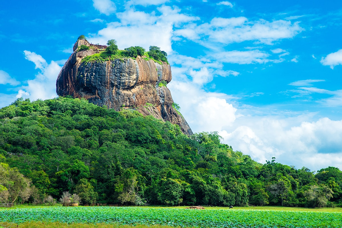11 day Sri Lanka Discovery tour with flights
