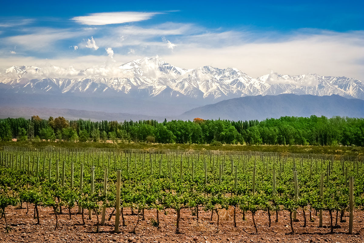 14 day Enchanting Chile and Argentina tour with flights