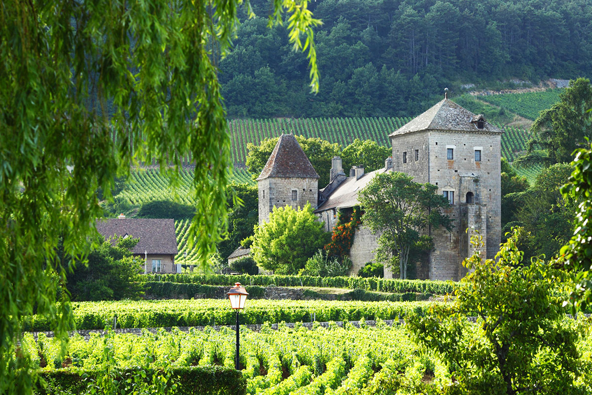 15 day Best of France tour with flights