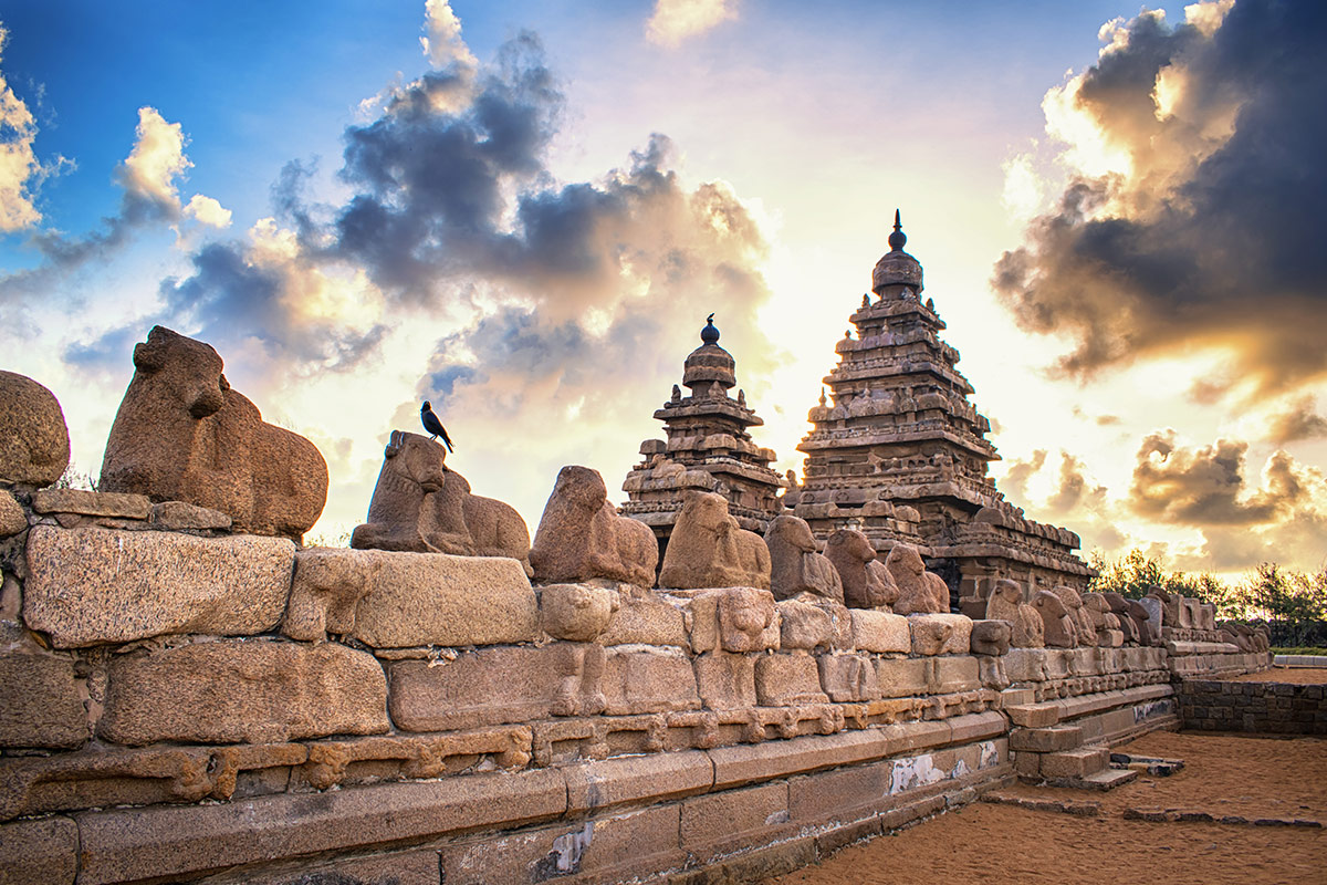 15 day Discover Southern India tour with flights