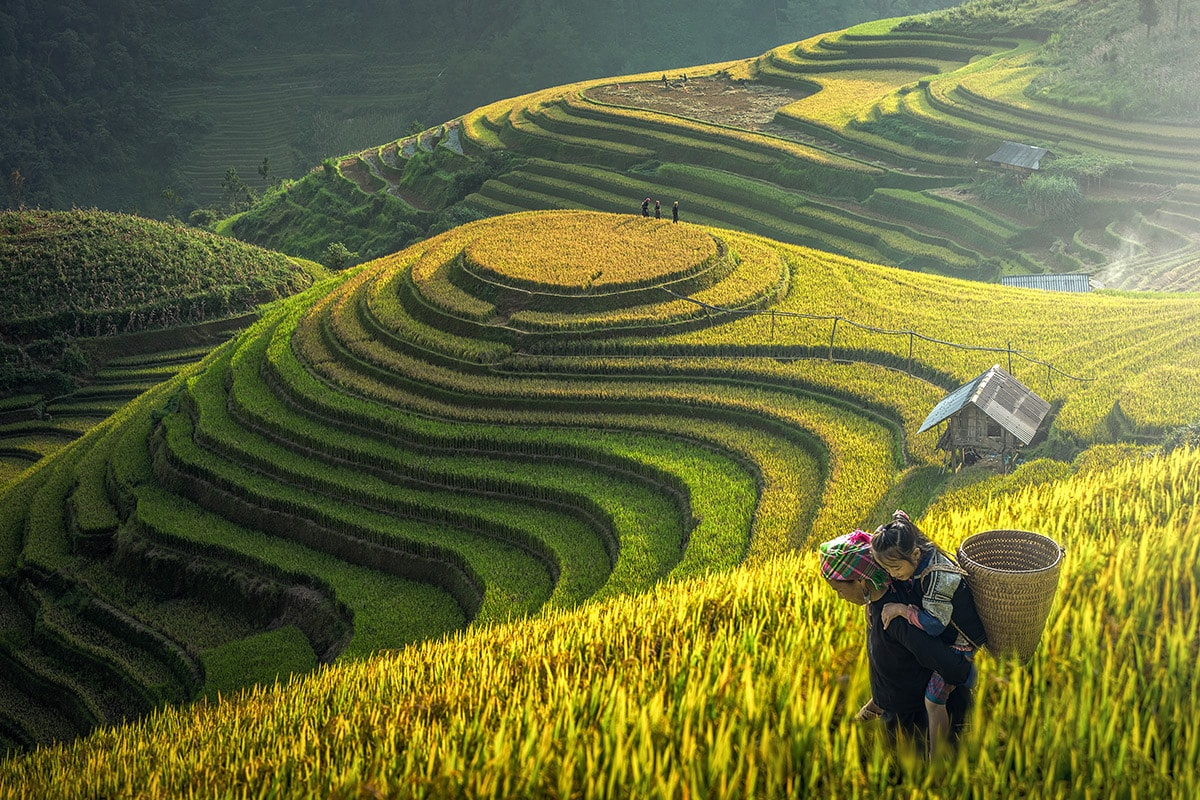 15 day Vietnam tour including Sapa with flights