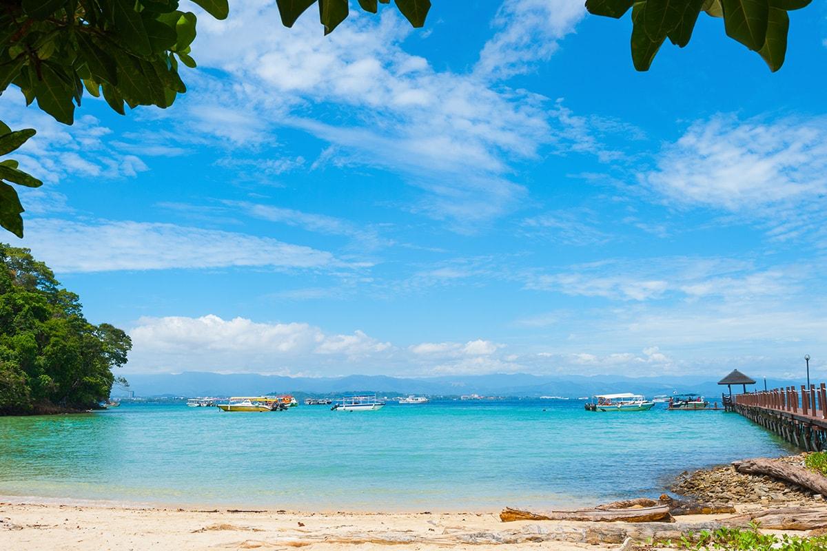 9 day Borneo Wildlife tour with flights