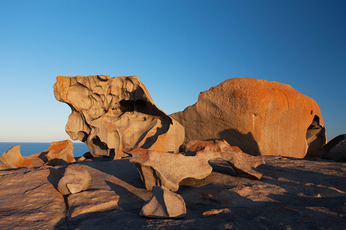 12 day Tastes of Southern Australia tour with Air New Zealand flights
